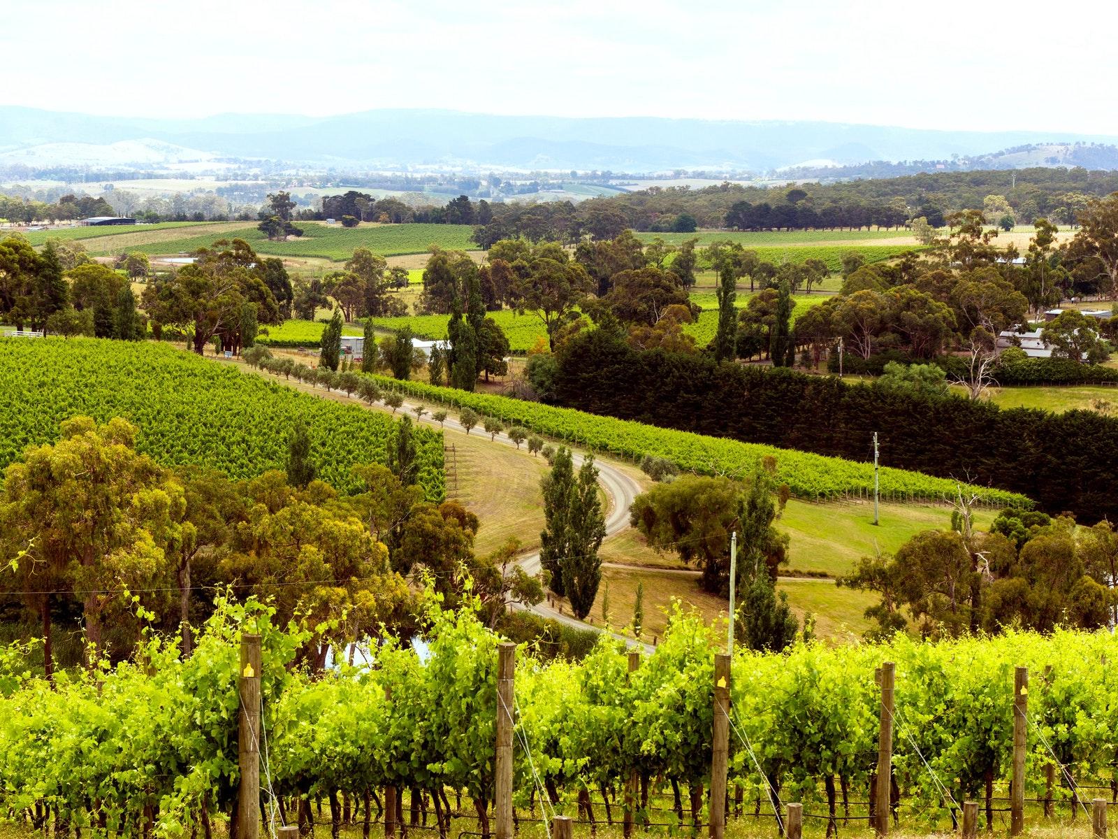 Melbourne Cider Tours