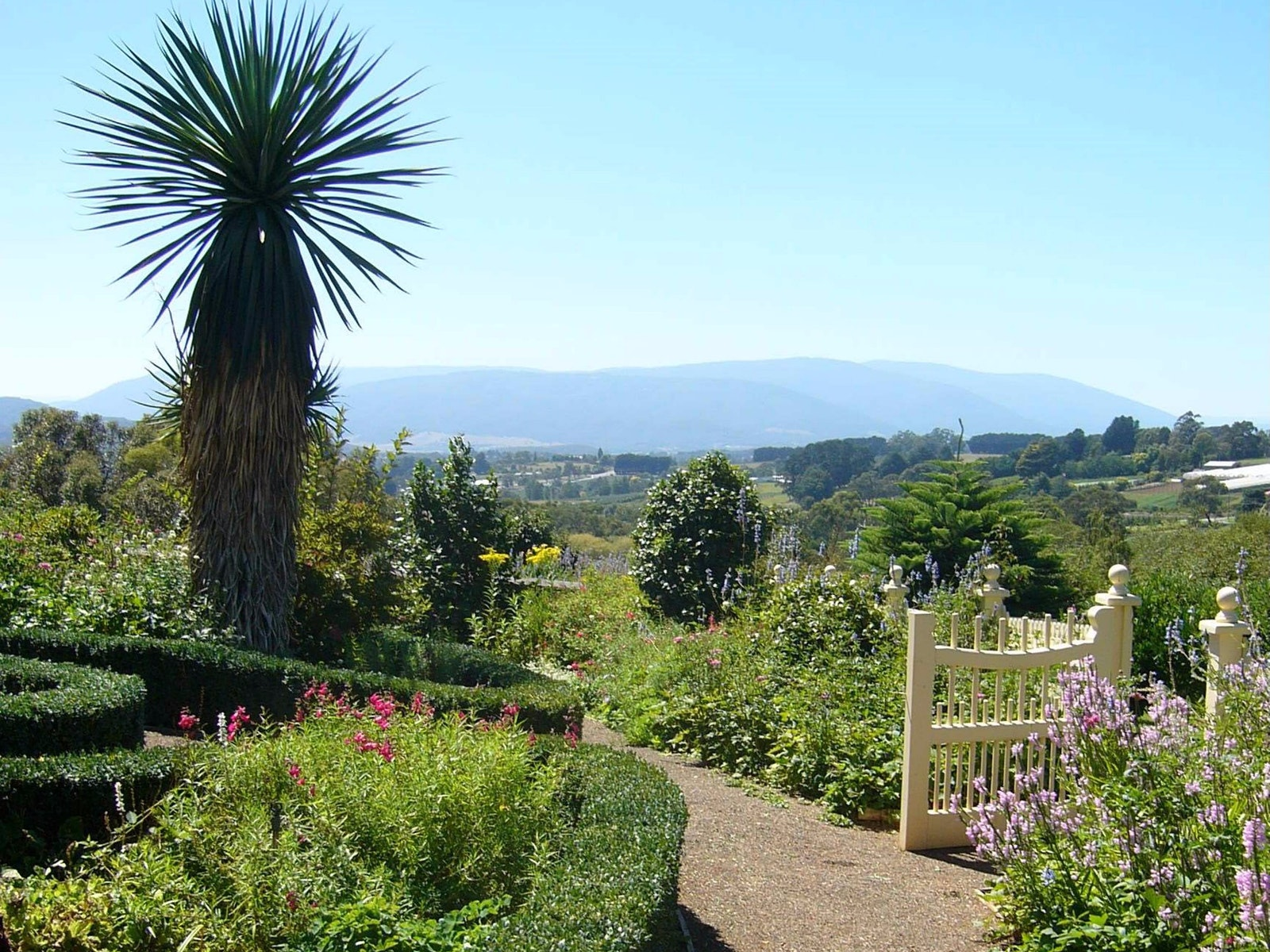 Views of the garden towards the mountains further up the Yarra Valley