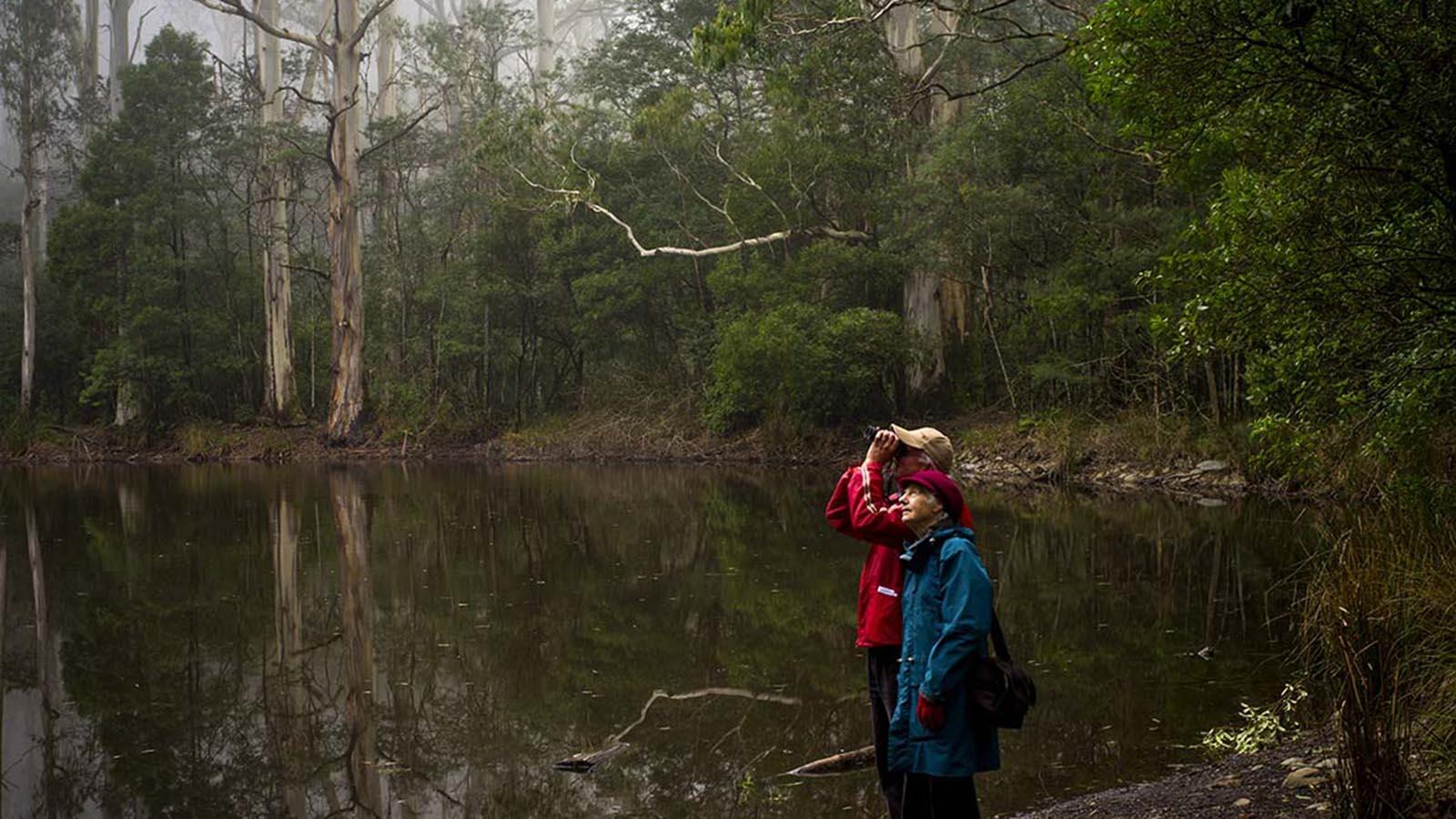 Mt Macedon walkers, Daylesford and the Macedon Ranges, Victoria, Australia