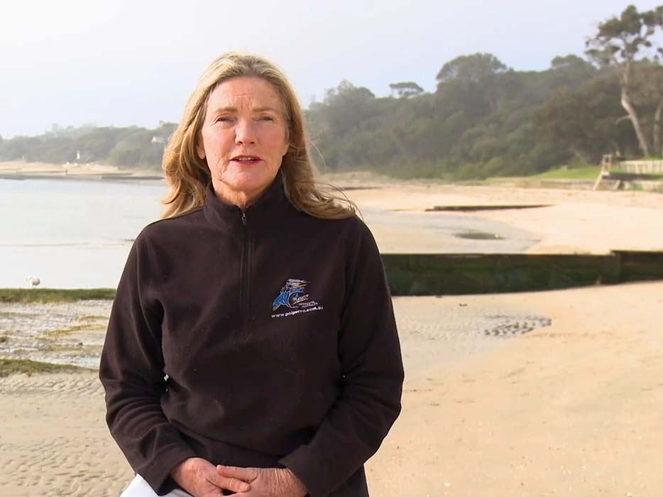 Judith Muir, Polperro Dolphin Swims, Mornington Peninsula, Victoria, Australia