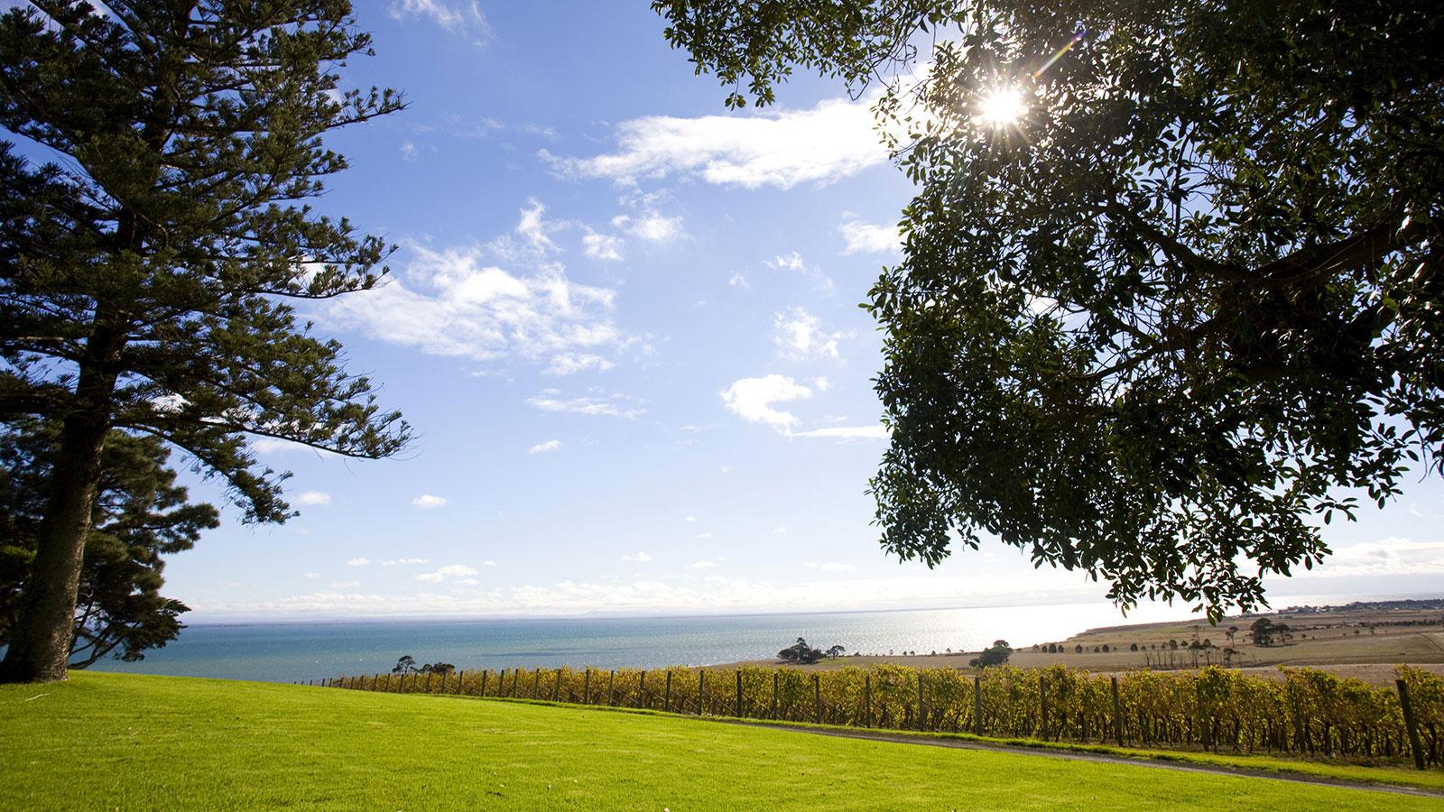 Spray Farm Estate, Geelong and the Bellarine, Victoria, Australia