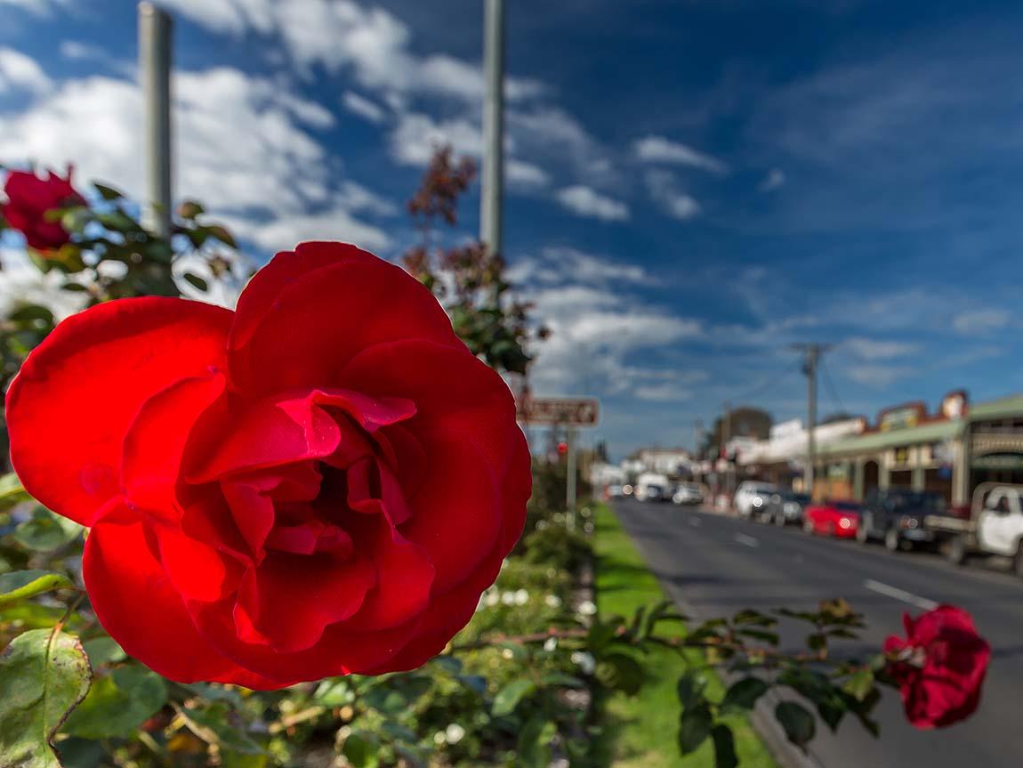 Rosedale, Gippsland, Victoria, Australia