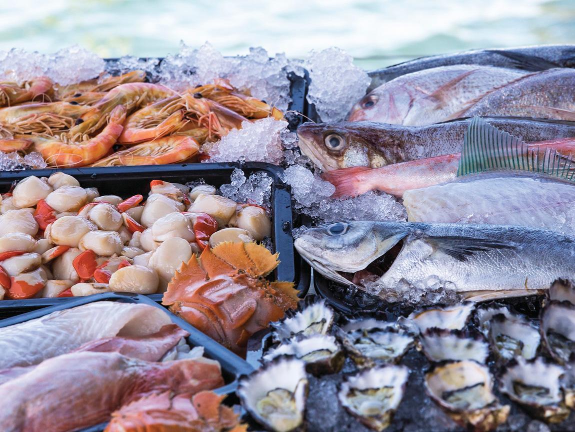 Ferryman's Seafood Cafe, Lakes Entrance, Gippsland, Victoria, Australia