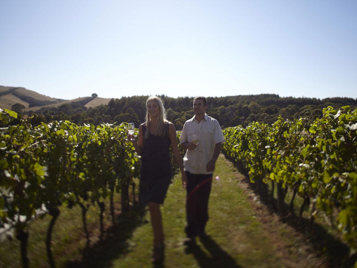 Waratah Hills Winery, Fish Creek, Gippsland, Victoria, Australia
