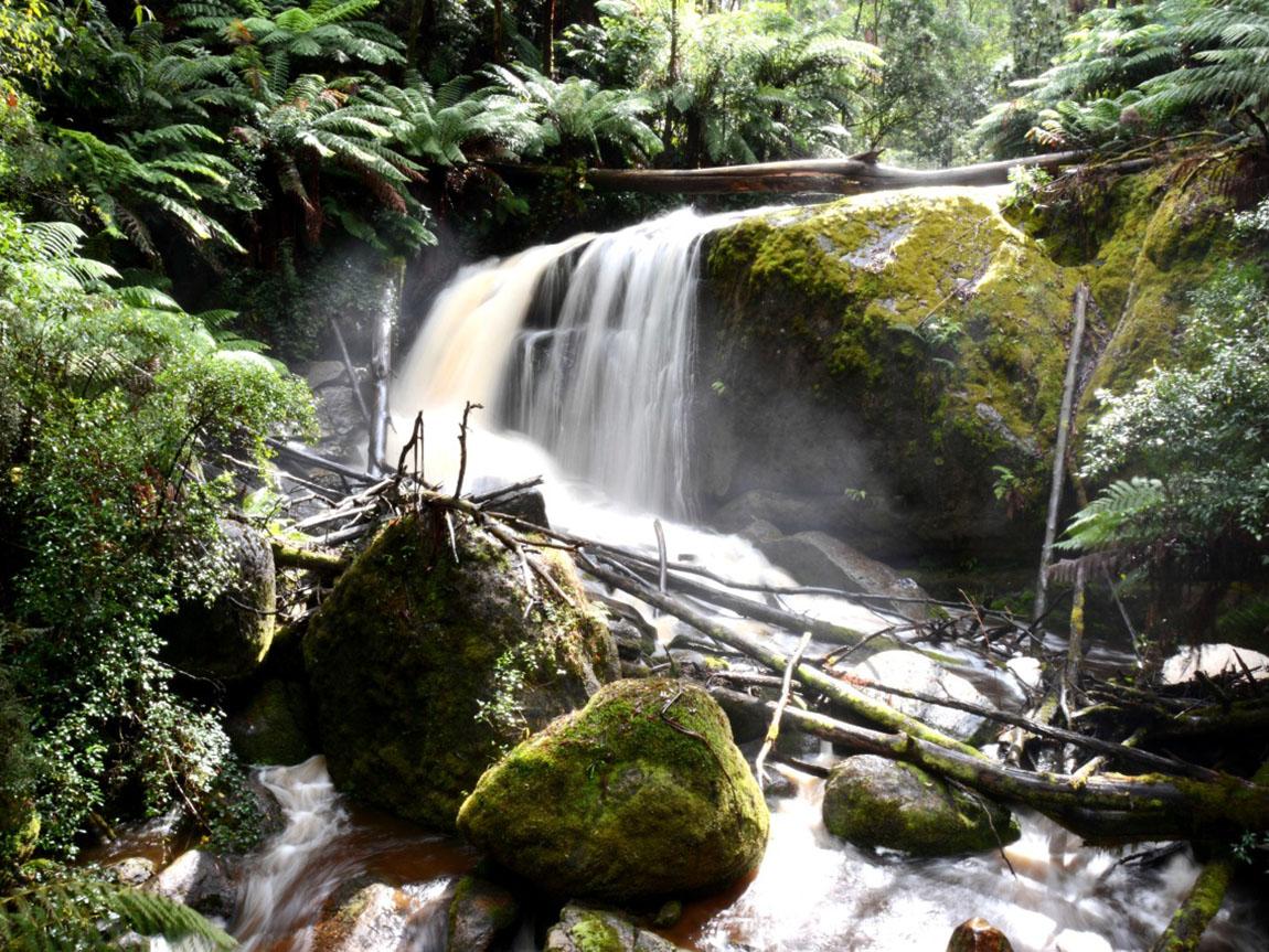 Amphitheatre Falls, Gippsland, Victoria, Australia