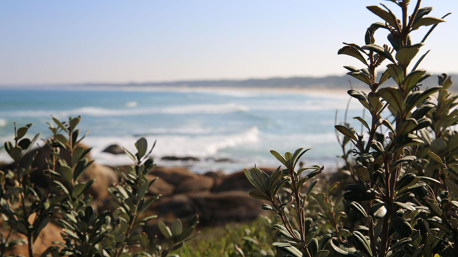 Cape Conran Coastal Park, Gippsland, Victoria, Australia