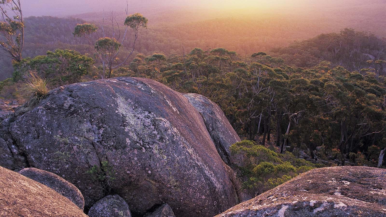 Genoa Peak, Gippsland, Victoria, Australia