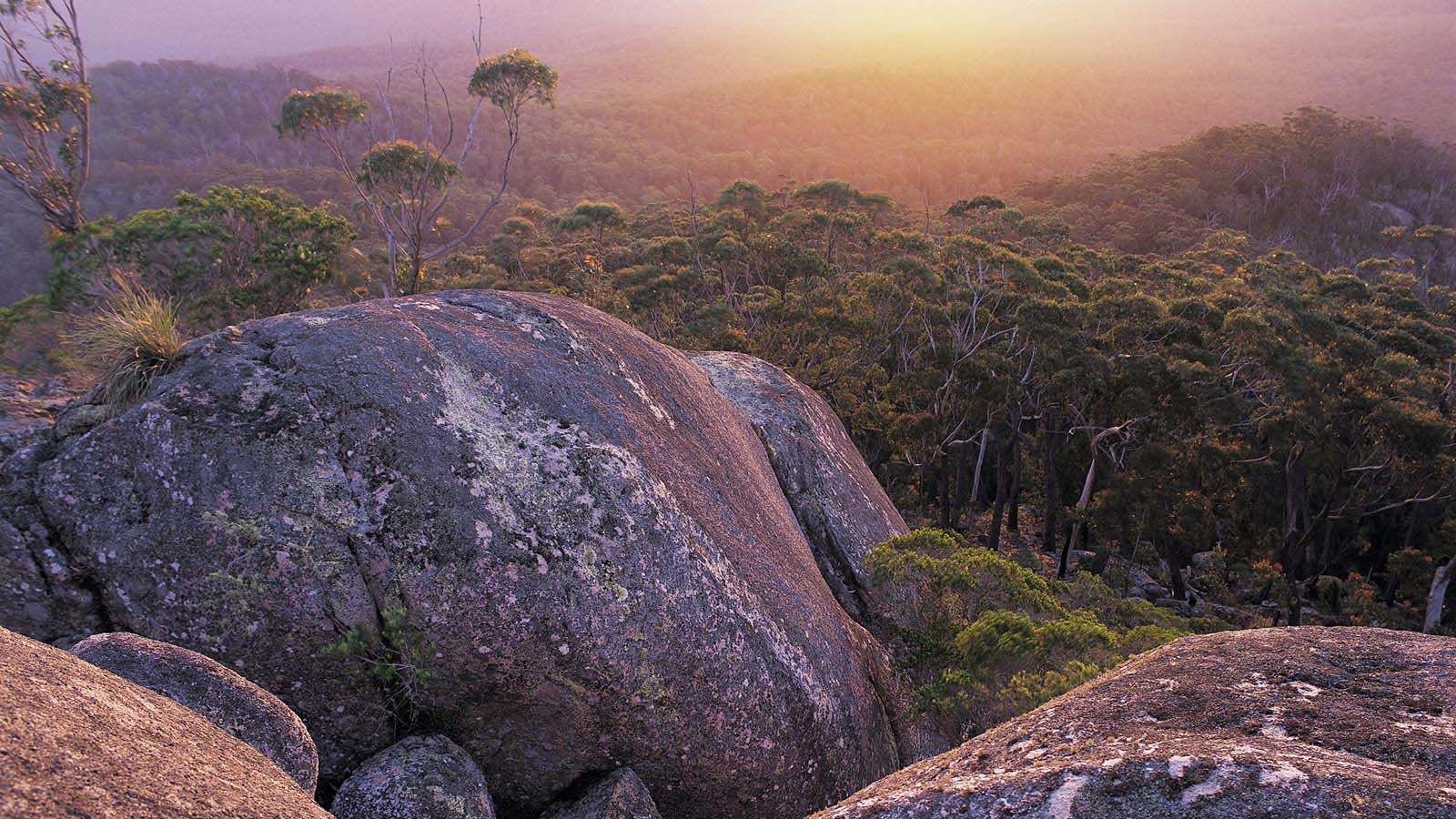 Genoa Peak in Croajingolong National Park, Gippsland, Victoria, Australia