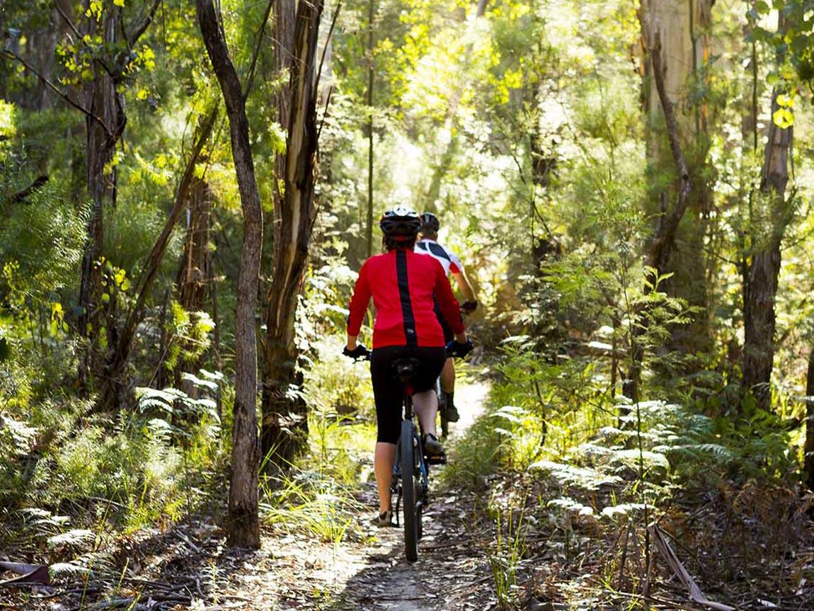 Gippsland Lakes Discovery Trail, Gippsland, Victoria, Australia