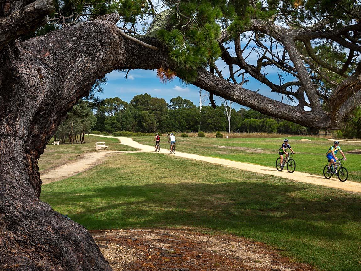Gippsland Plains Rail Trail, Gippsland, Victoria, Australia