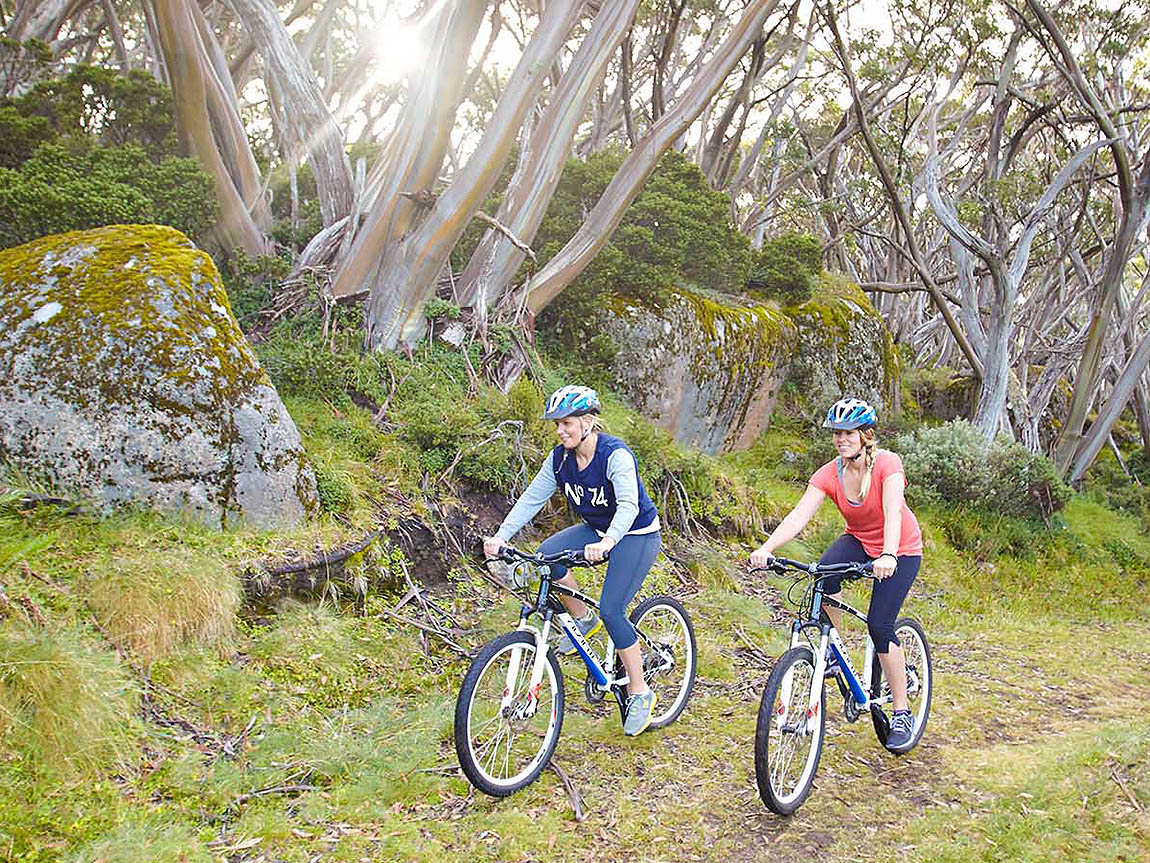 Mountain biking at Mount Baw Baw, Gippsland, Victoria, Australia