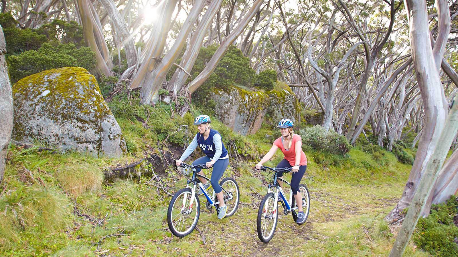 Mountain biking at Mount Baw Baw, Gippsland, Victoria, Australia