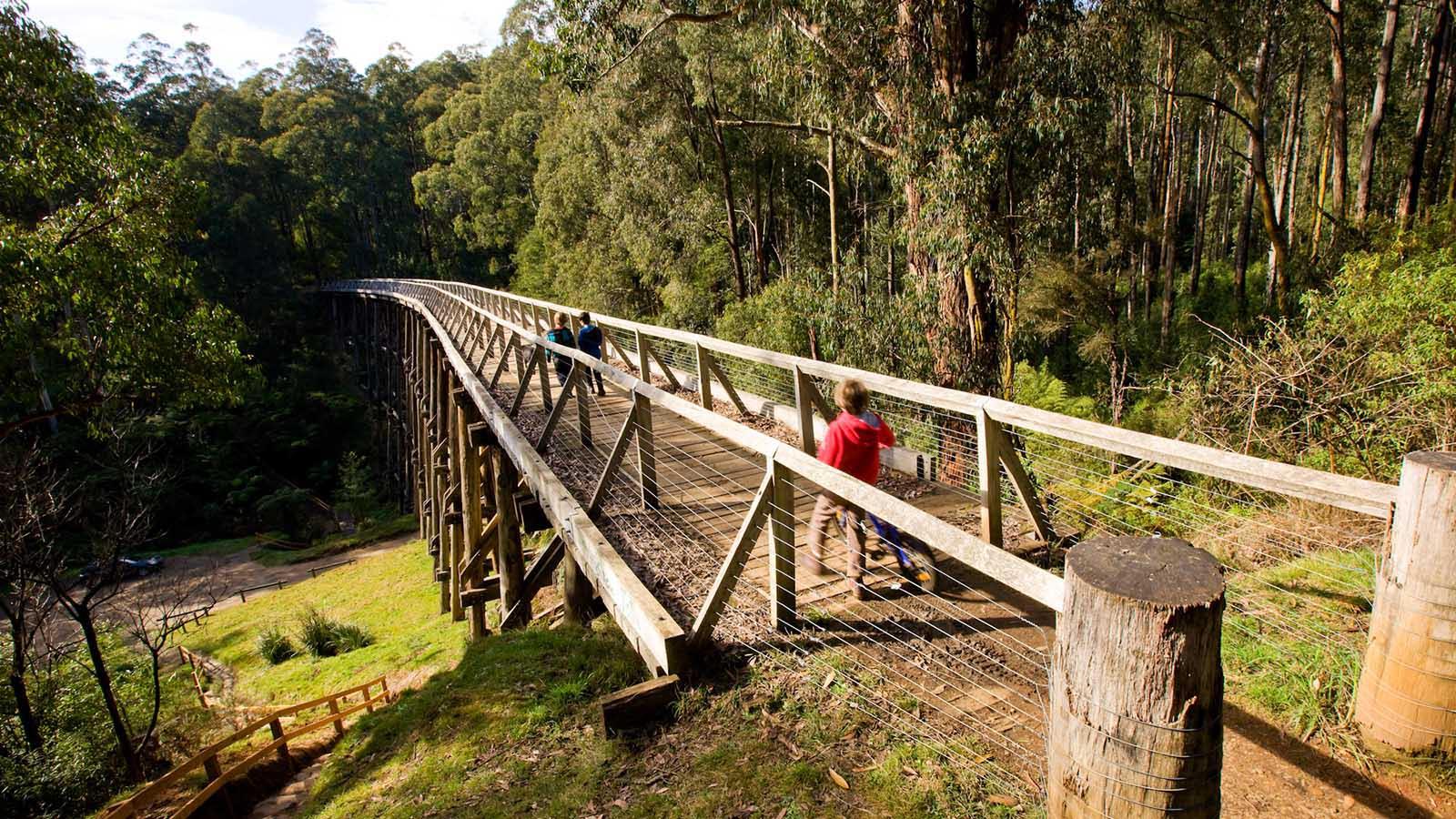 Noojee Trestle Bridge Rail Trail, Gippsland, Victoria, Australia