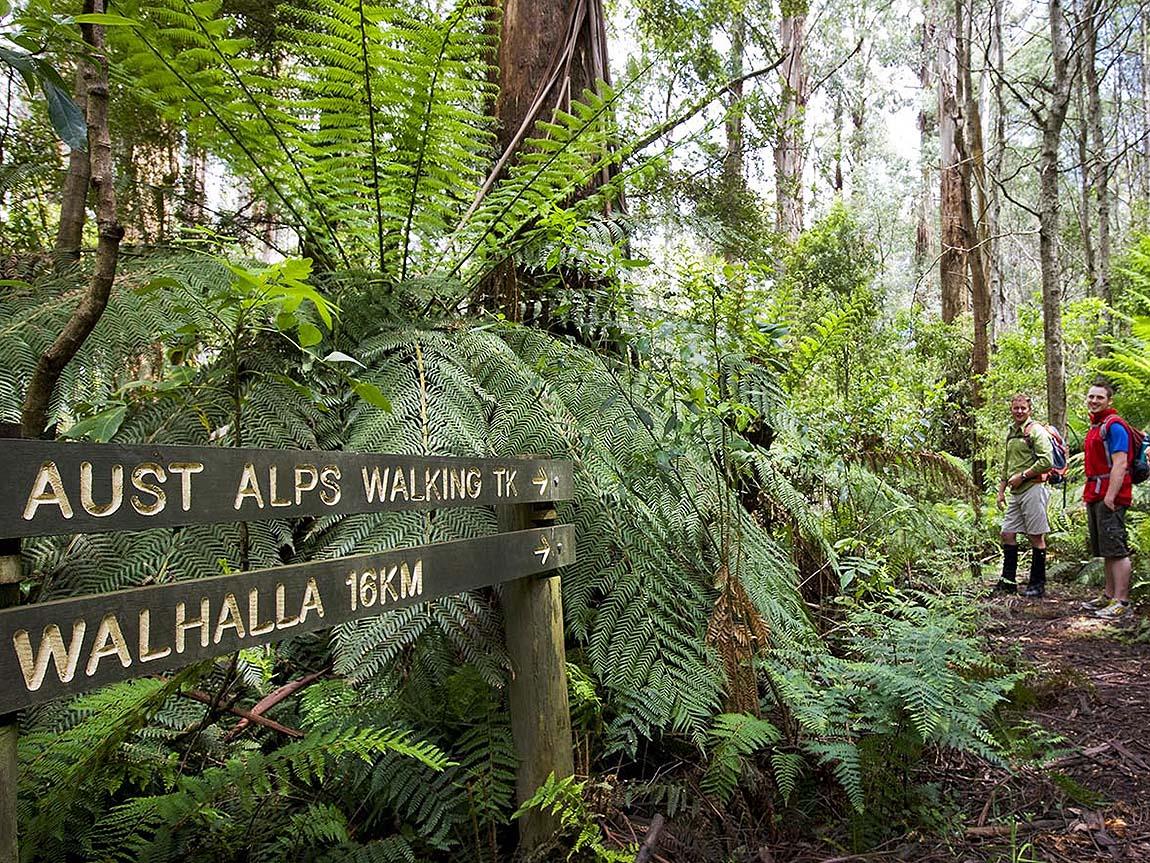 Great Walhalla Alpine Trail, Gippsland, Victoria, Australia