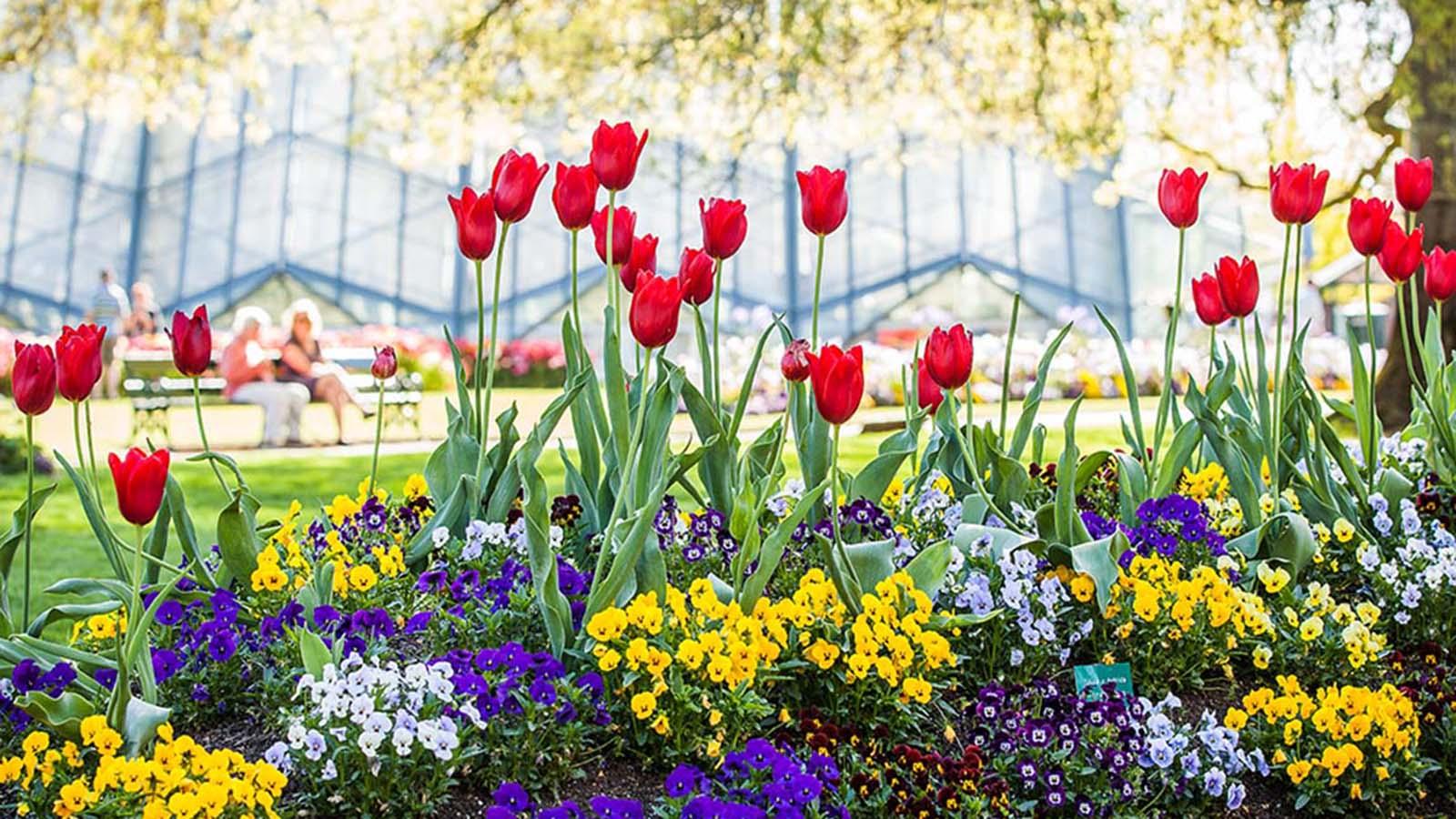 Ballarat Botanic Gardens, Goldfields, Victoria, Australia