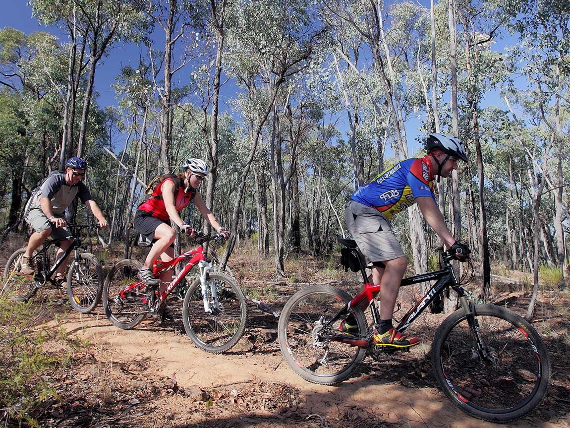 Mountain biking near Bendigo, Goldfields, Victoria, Australia