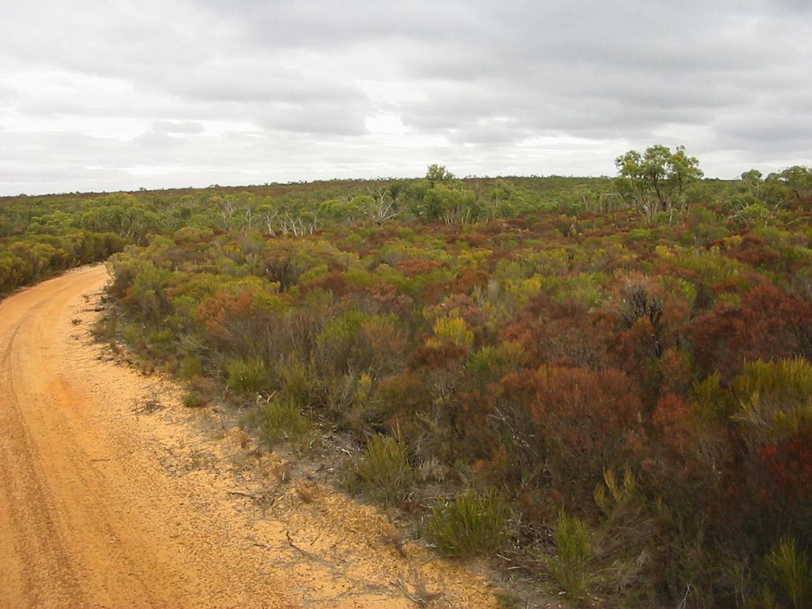 Desert Discovery Walk, Grampians, Victoria, Australia