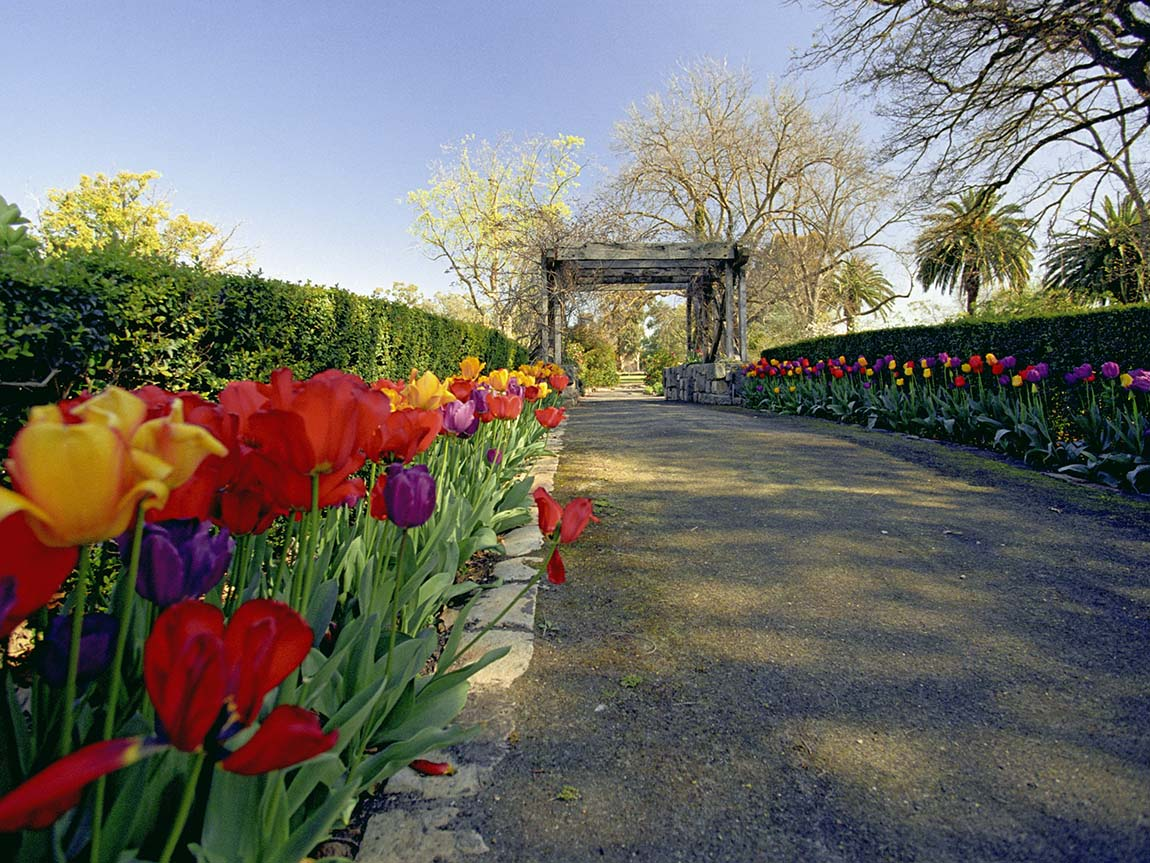 Images Of Gardens parks and gardens, nature and wildlife, victoria, australia