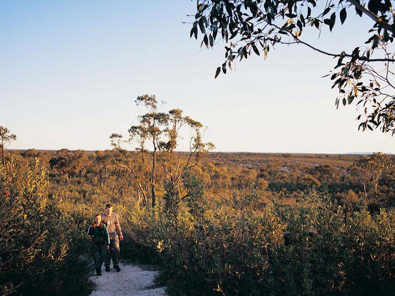 Hiking in Little Desert National Park, Grampians, Victoria, Australia