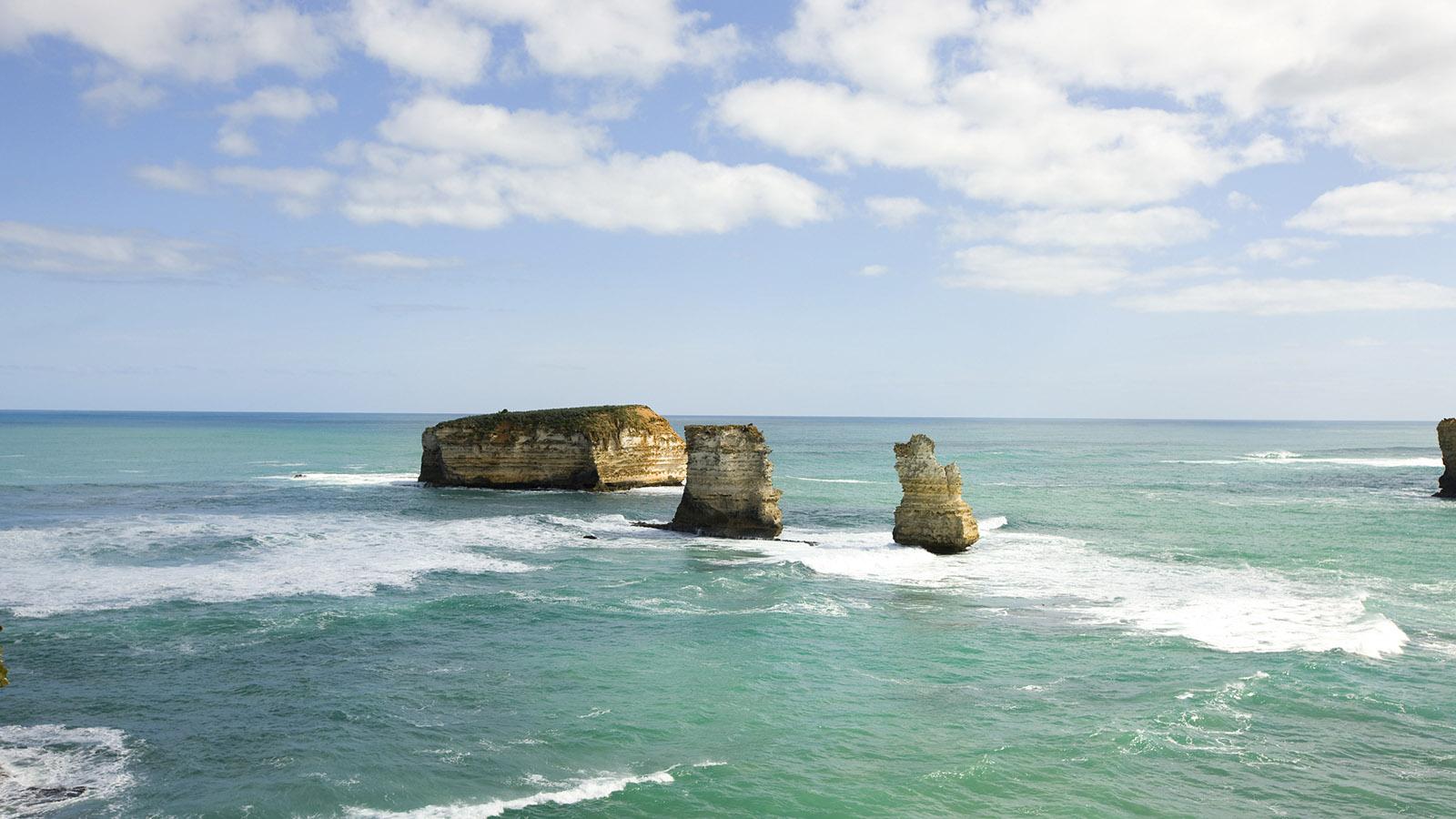 12 Apostles, Nature and wildlife, Great Ocean Road, Victoria