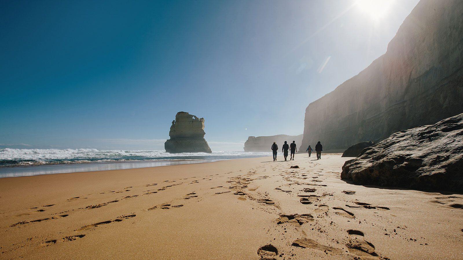 12 Apostles, Nature and wildlife, Great Ocean Road, Victoria, Australia