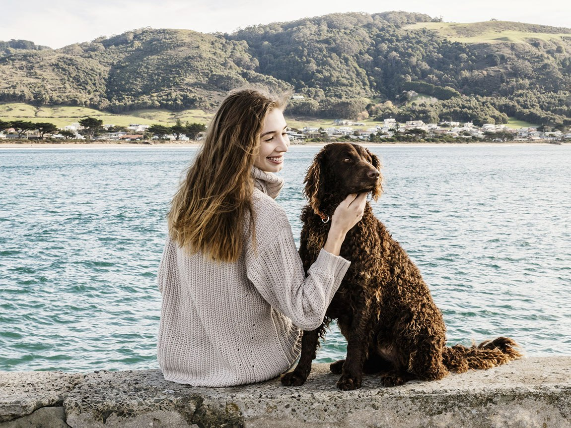 Great Ocean Road for dogs, Victoria, Australia