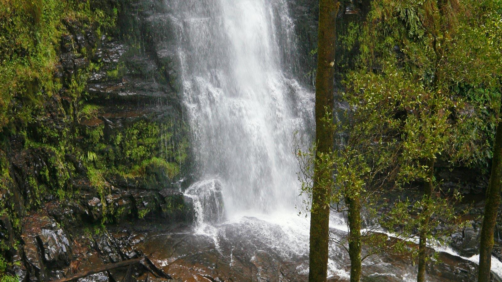 Erskine Falls, Lorne, Great Ocean Road, Victoria, Australia