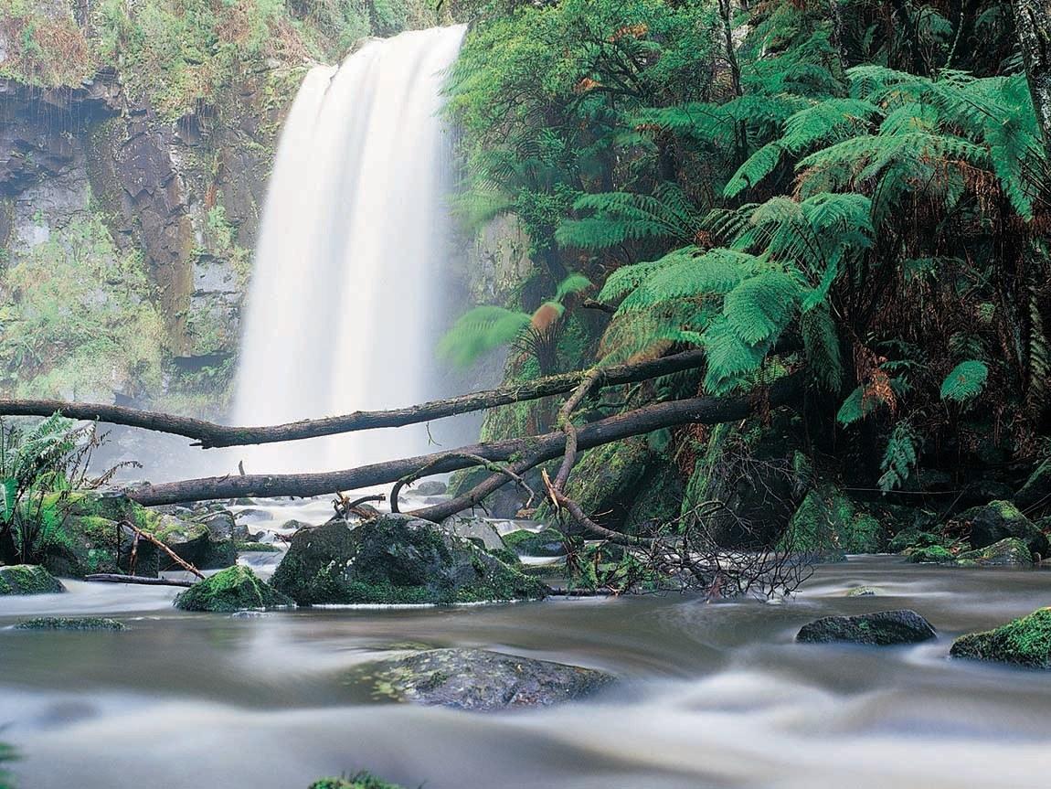 Hopetoun Falls, Great Ocean Road, Victoria, Australia
