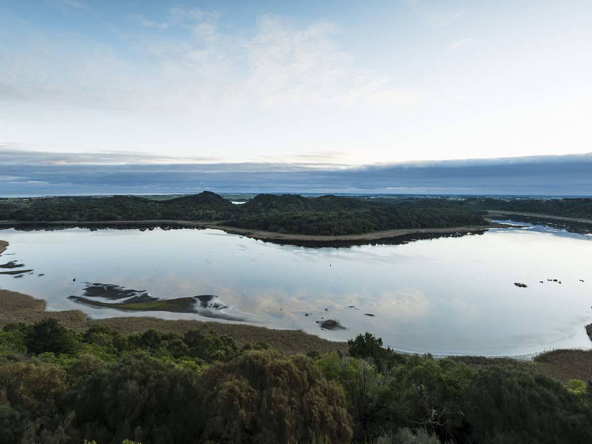 Tower Hill Wildlife Rerserve, Great Ocean Road, Victoria, Australie