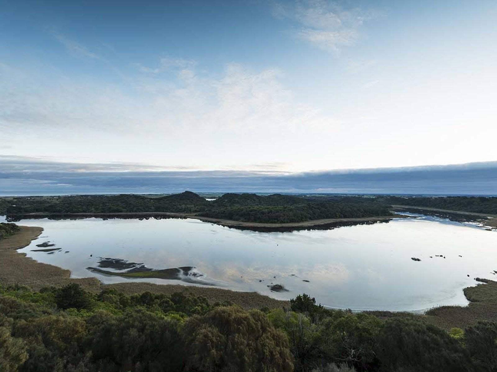 Tower Hill Wildlife Reserve, Great Ocean Road, Victoria, Australia