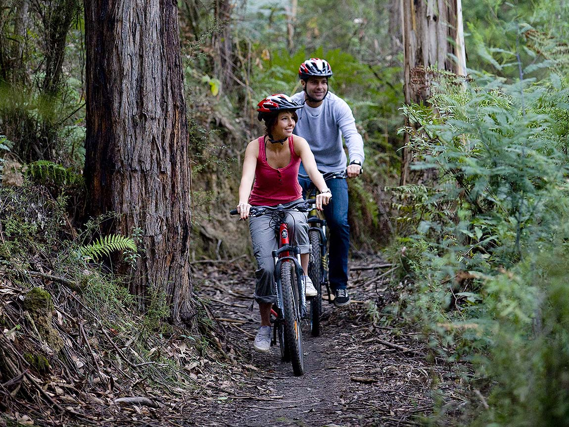 Mountain biking in Forrest, Great Ocean Road, Victoria, Australia