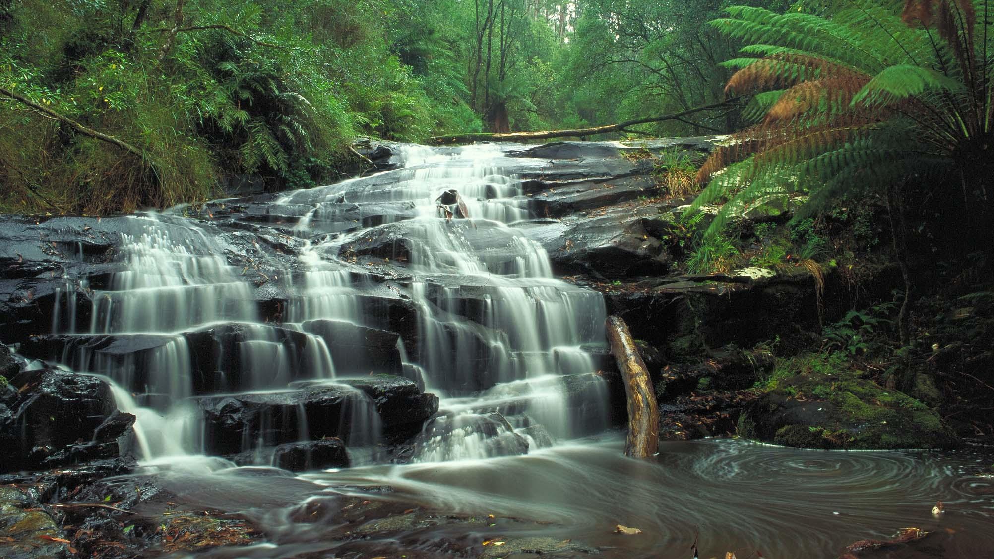 Cora Lynn Cascades, Great Ocean Road, Victoria, Australia