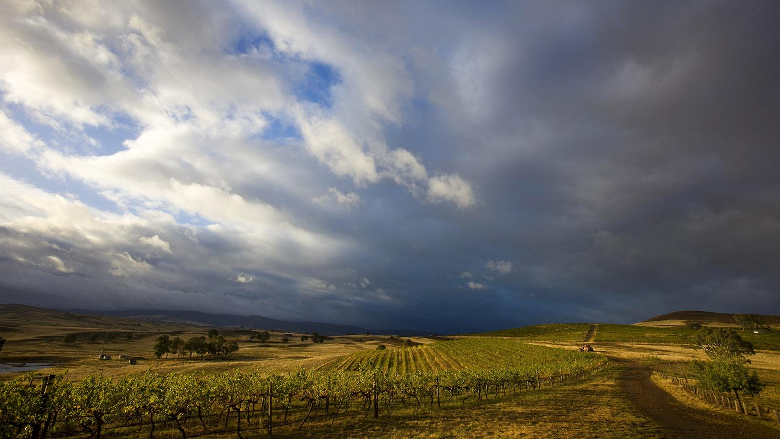 Delatite Winery, High Country, Victoria, Australia
