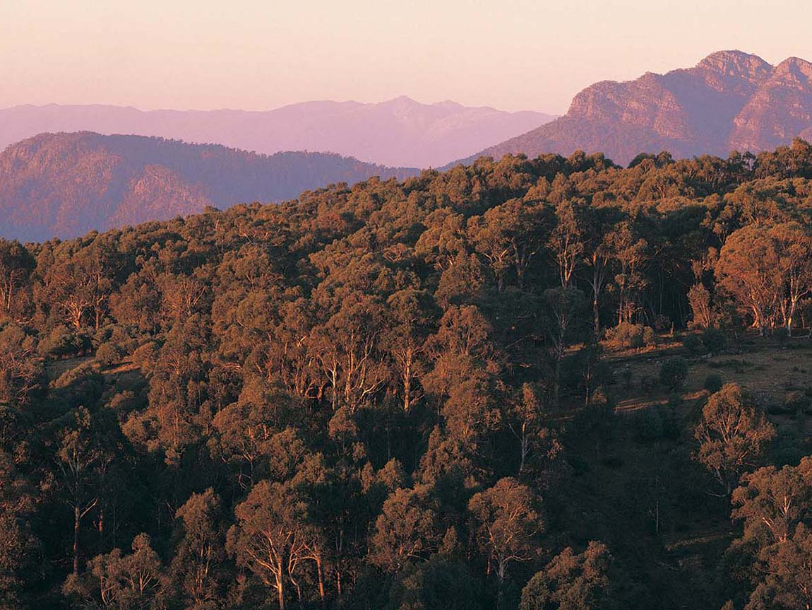 Alpine National Park, High Country, Victoria, Australia