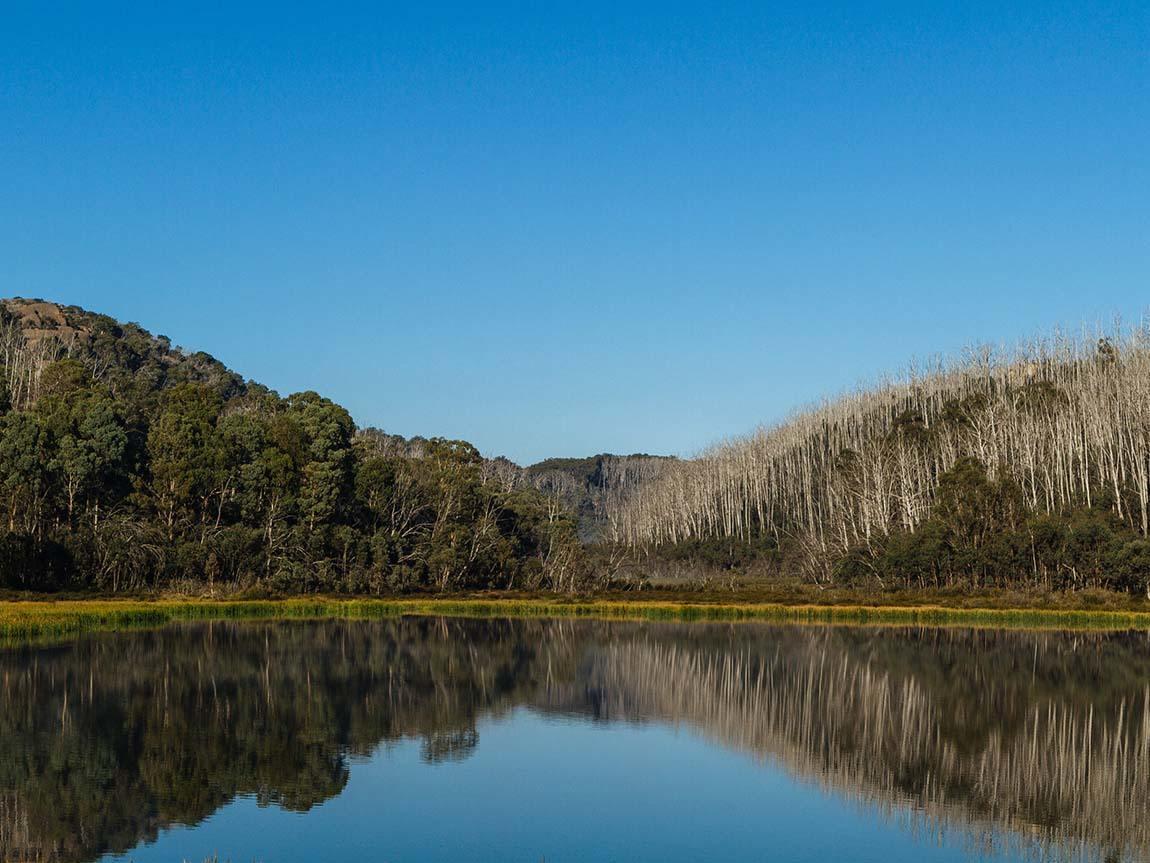 Mount Buffalo, High Country, Victoria, Australia. Image: Roberto Seba