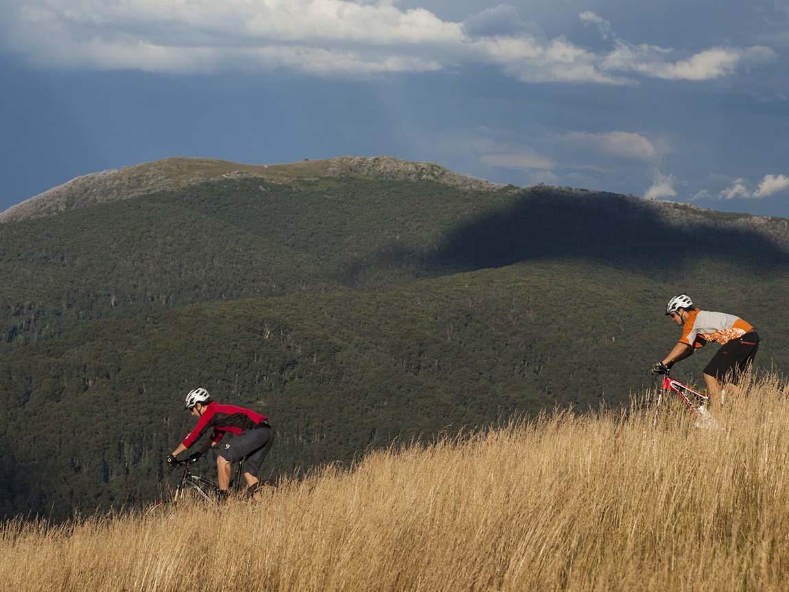 Mountain biking at Mount Buller, High Country, Victoria, Australia