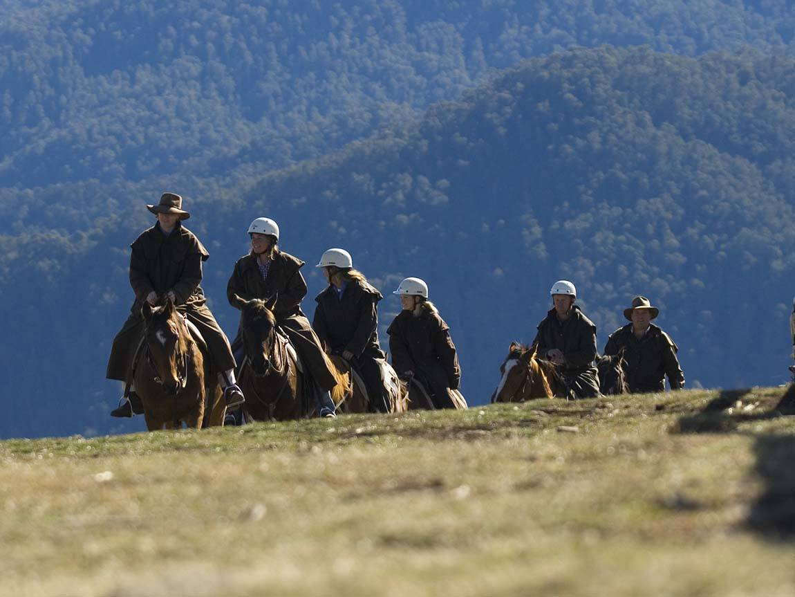 Horse riding on Mount Stirling, High Country
