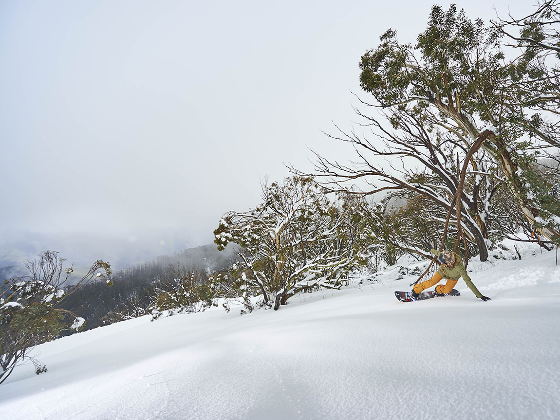 Snowboarder at Mt Buller, High Country, Victoria, Australia. Copyright: Andrew Rialton