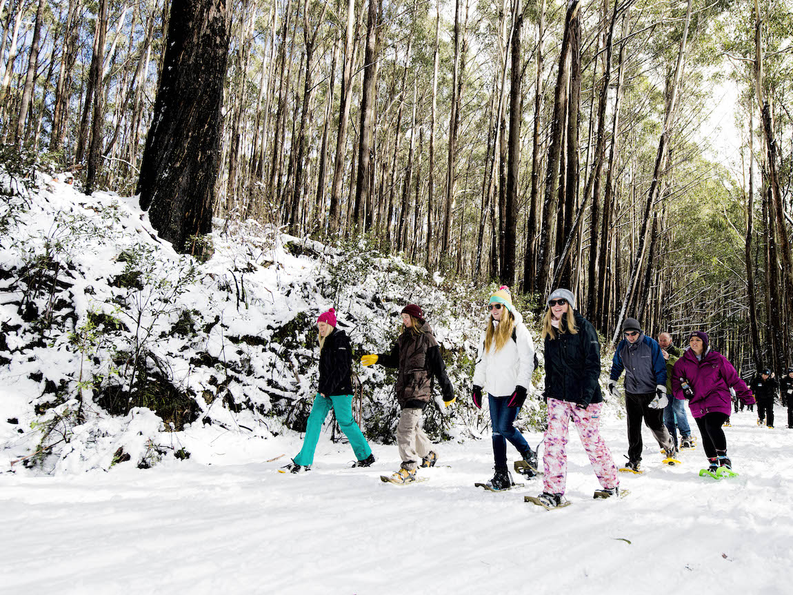 Snowshoeing on Mt Stirling, High Country, Victoria, Australia