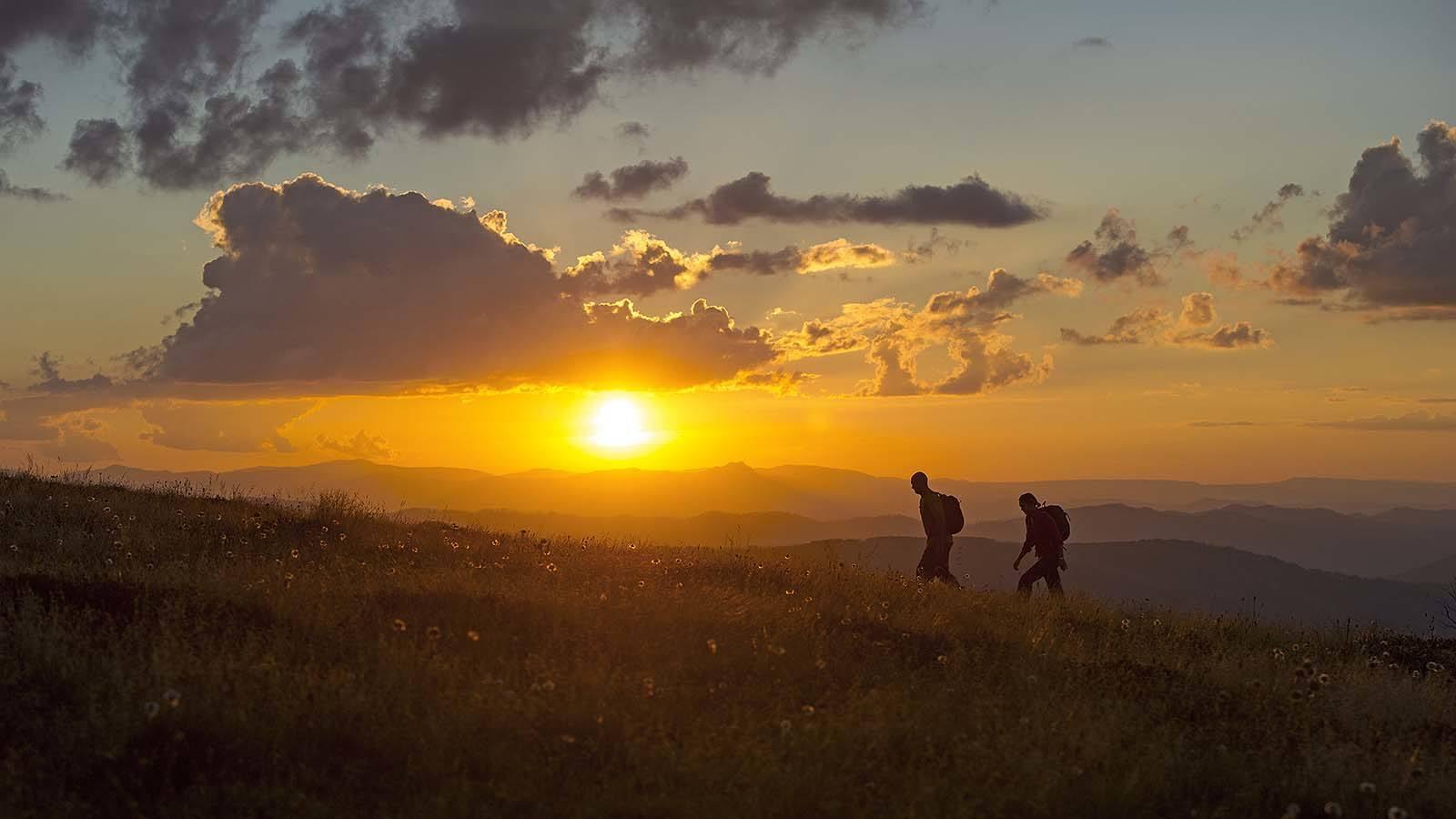 Hiking the Razorback Trail, Mount Feathertop, High Country, Victoria, Australia