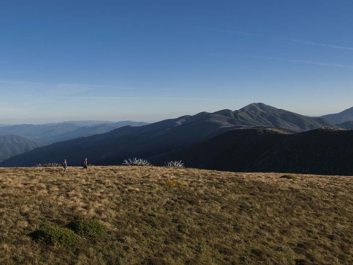 Hiking the Razorback Trail, Mount Feathertop, High Country, Victoria, Australia