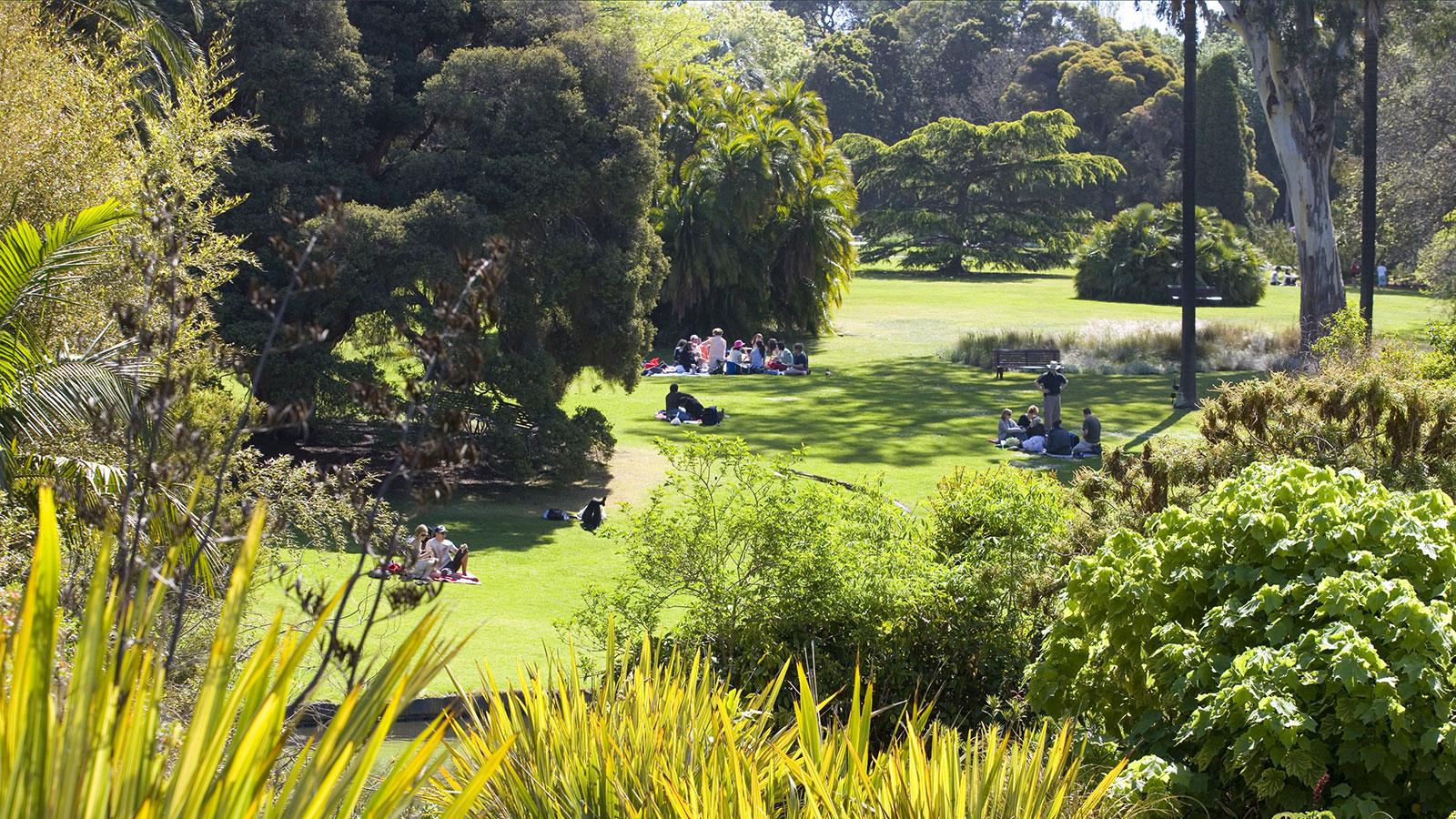 Botanic Gardens, Melbourne, Victoria, Australia