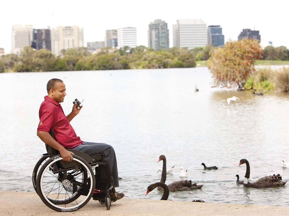 Watching the swans at Albert Park Lake, Melbourne, Victoria, Australia. Photo: Parks Victoria