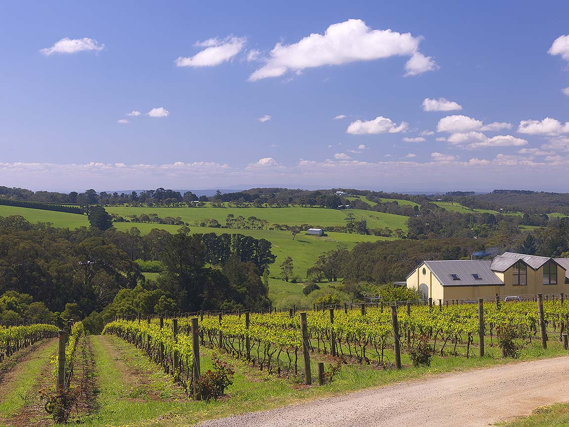 Eldridge Estate, Mornington Peninsula, Victoria, Australia. Image: Derek Ross