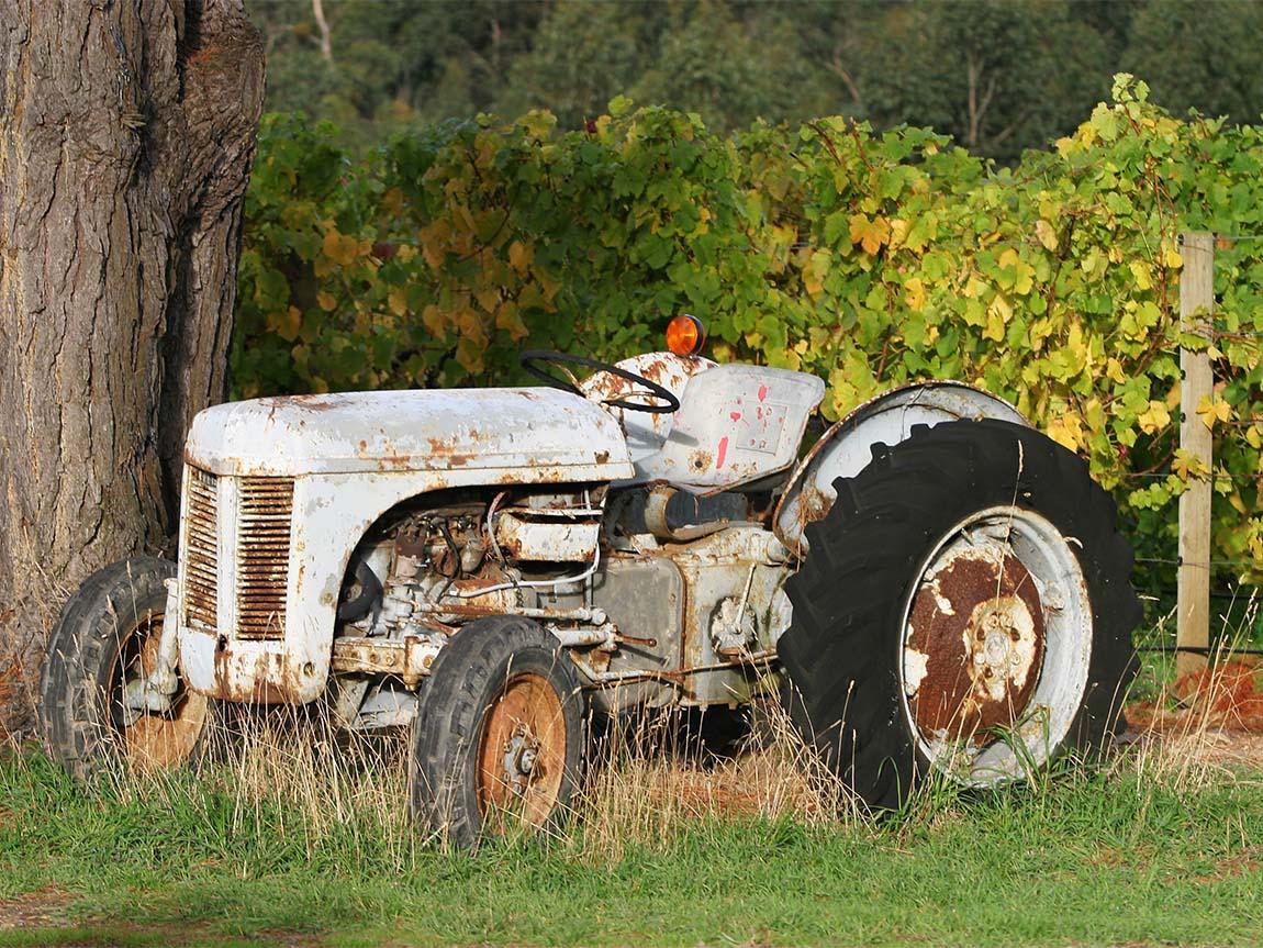 Ten Minutes By Tractor, Mornington Peninsula, Victoria, Australia
