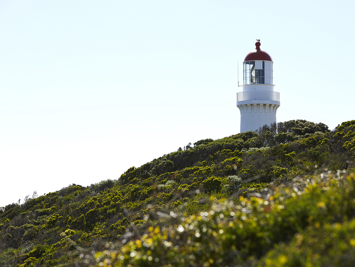 Two Bays Trail at Cape Schanck Lighthouse, Mornington Peninsula, Victoria, Australia