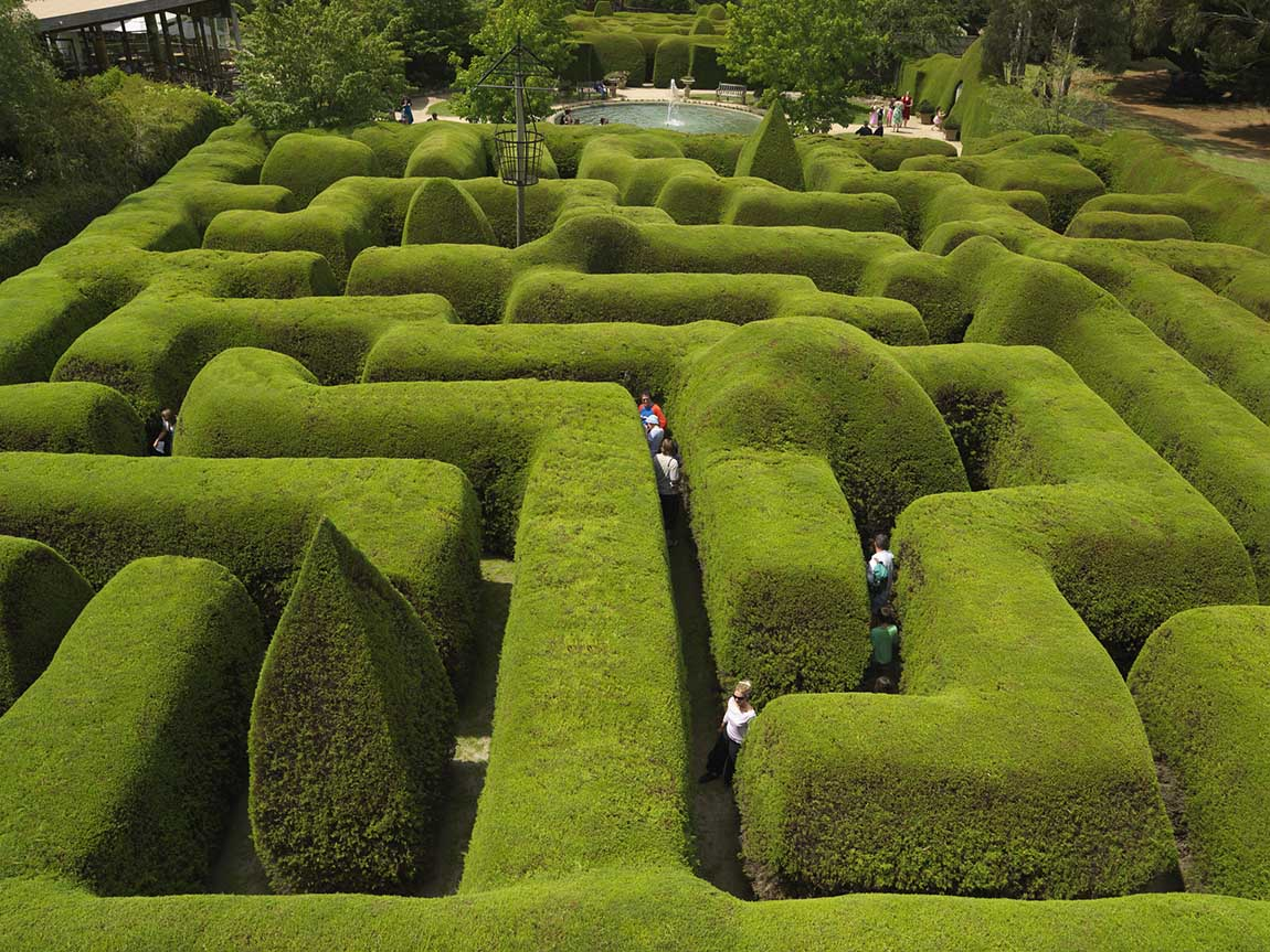 Ashcombe Maze and Lavender Gardens, Mornington Peninsula, Victoria, Australia