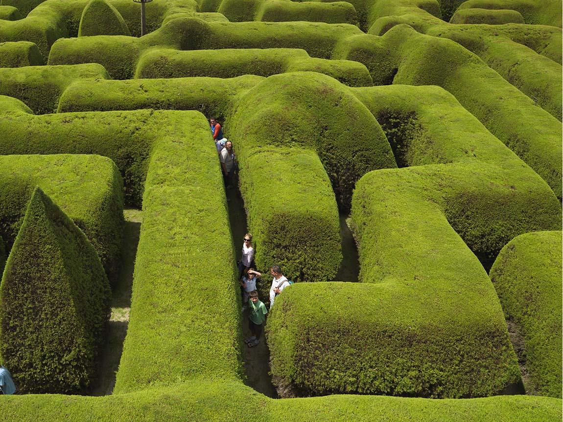 Ashcombe Maze and Lavender Gardens, Mornington Peninsula, Victoria, Australia