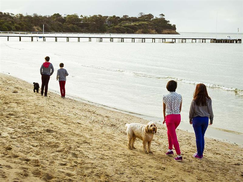 Gippsland for dogs, Victoria, Australia