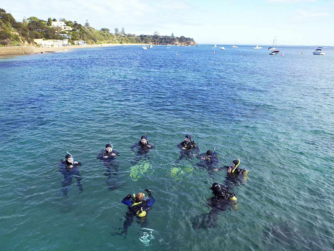 Scuba diving, Portsea, Mornington Peninsula, Victoria, Australia